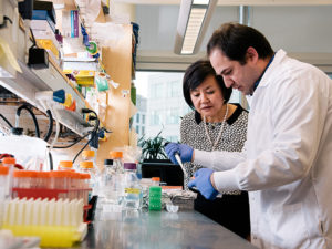 A man uses a pipette at a lab bench while Li-Huei Tsai looks on